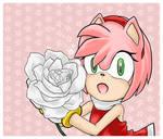 Amy's Rose