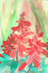 Salvia Dance by RebeccaTripp