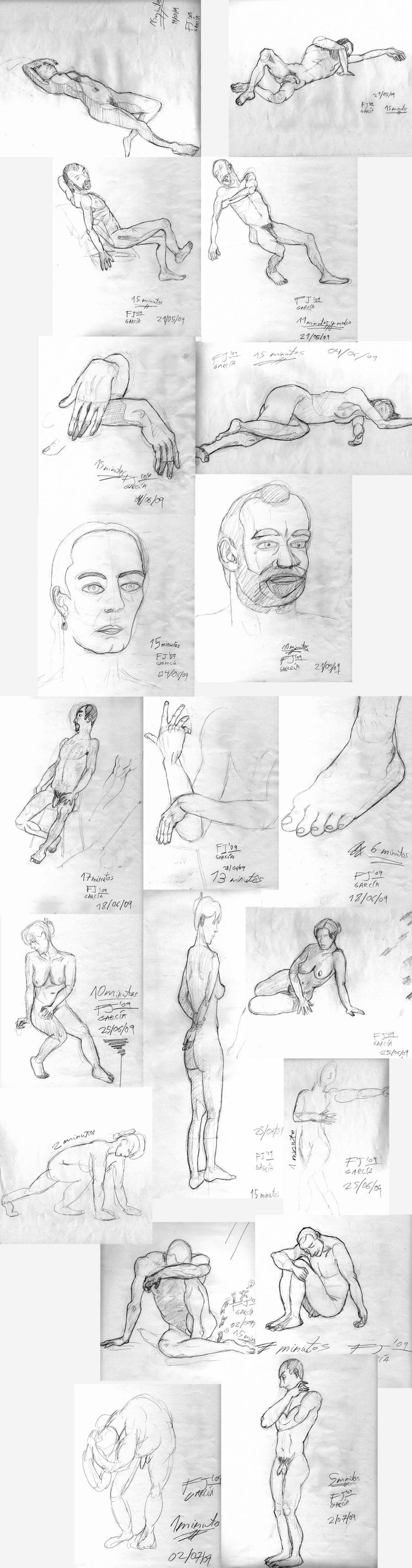 Anatomia 2009