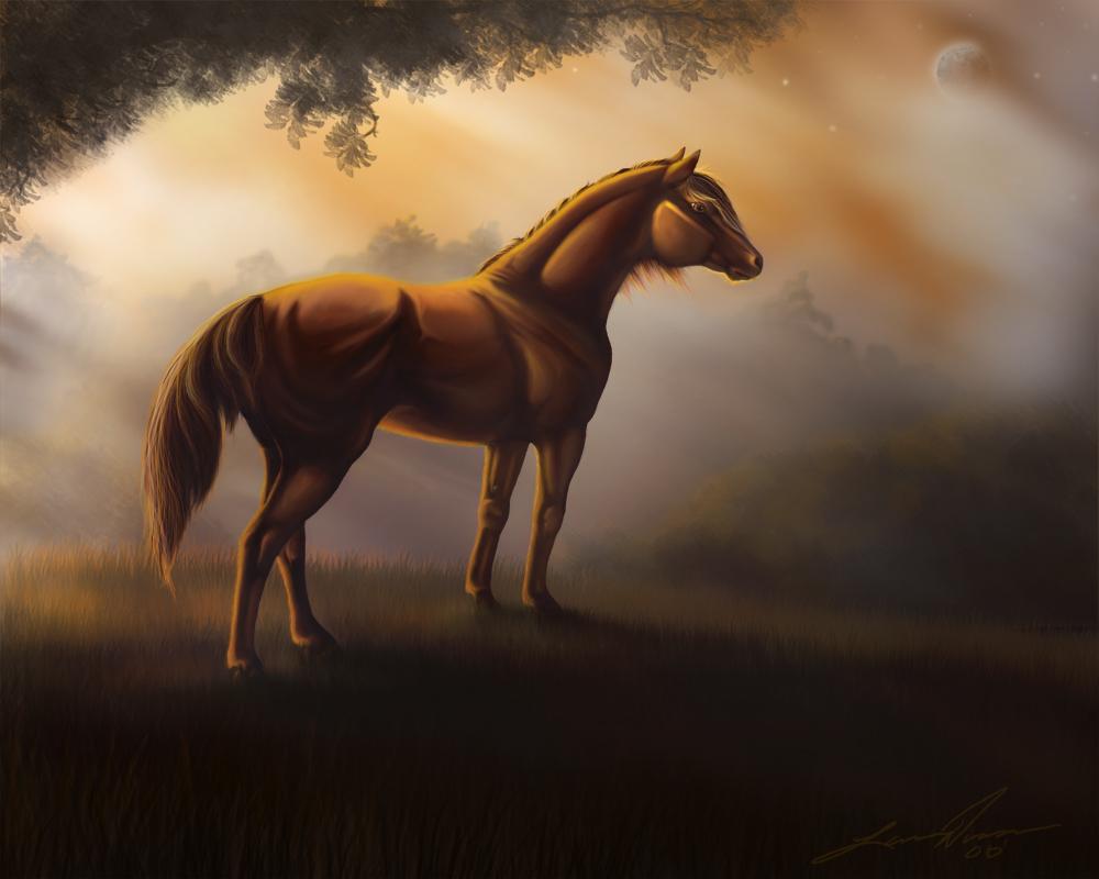 http://fc22.deviantart.com/fs20/f/2007/230/e/0/Horse_Autum_by_yellochevy02.jpg