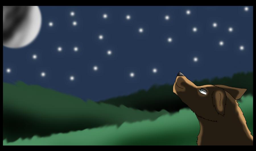 Galería de Dibujos .::Eowyn::. Looking_the_night_sky_by_eowynwolf2-d4kh7k8