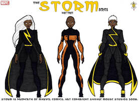 Storm Series: Part Three by SavageMouse