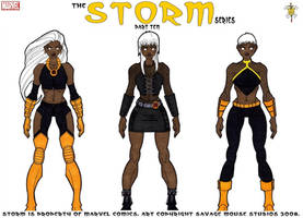 Storm Series: Part Ten by SavageMouse