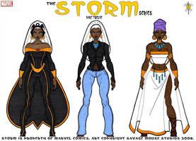 Storm Series: Part Twelve by SavageMouse