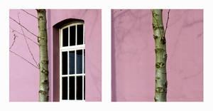 Pink Panels by Season-5
