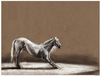 Finale by equusrevelrous