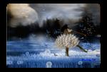 Butterfly Ballet by Beckdg