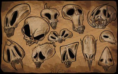 skullsskulls