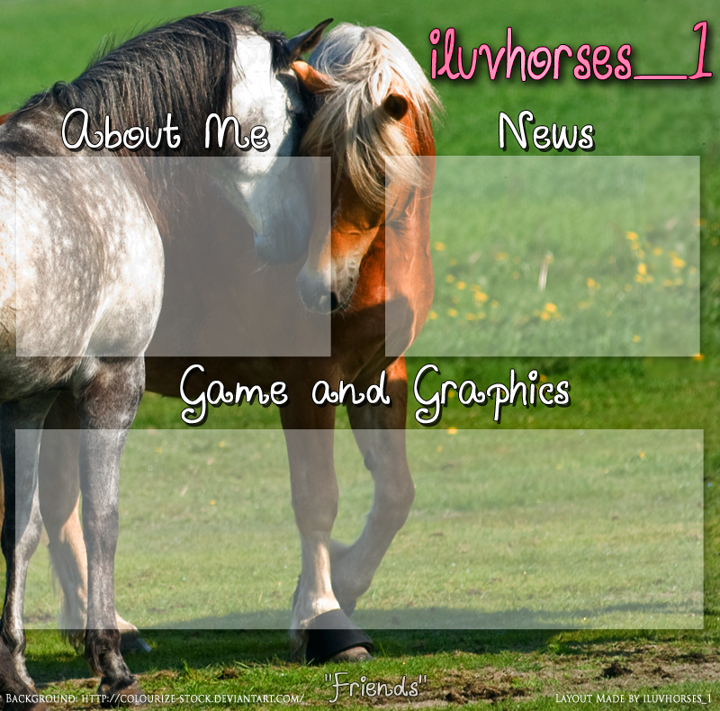 Other howrse layout by iluvhorsesequineart on deviantart