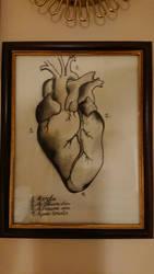 Heart by NanopanoGusano
