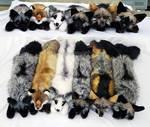 All the Fox Plush!