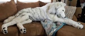 Life-Size Arctic Wolf Plush