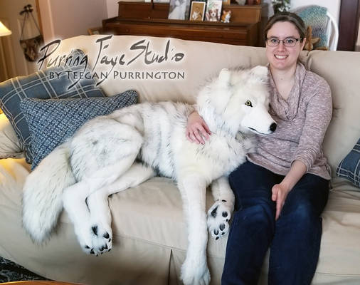 Life-Size Arctic Wolf Plush (and Artist)
