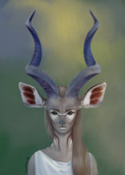 Kudu - color