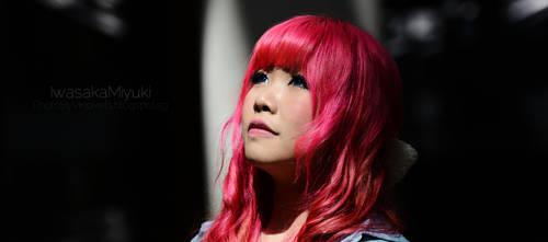 Spotlight : closeup by MiiyuKorner