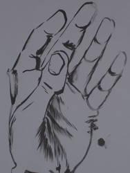 A Left Hand by EliKatz