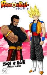 DRAGONBALL: THE END BEGINS by ERIC-ARTS-inc
