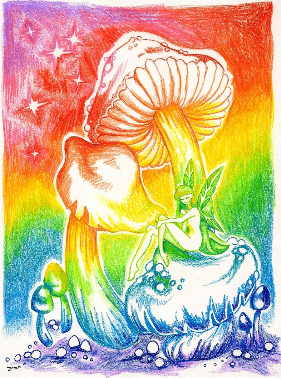 Rainbow Mushroom Fairy by LadyZoraGirl on DeviantArt  Rainbow Mushroo...