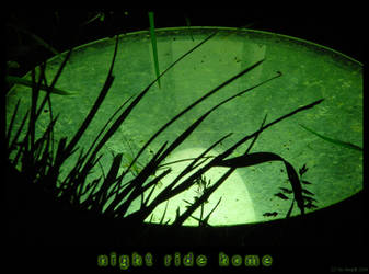 night ride home II by theMuspilli