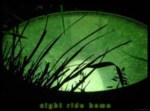 night ride home II