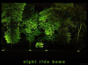 night ride home IV