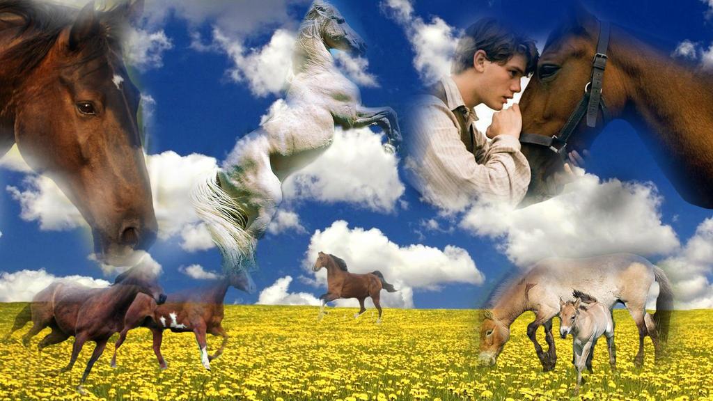 HorseWallpaper copy by ArtisticEm on deviantART