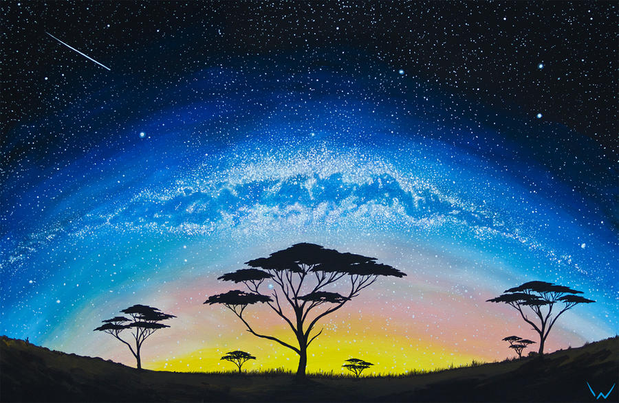 African Night Sky by NicoW92