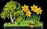 bonsai_minuitluna_1_by_auricolor-dab8j84.png
