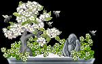 bonsai_jastoz_1_by_auricolor-daba31q.png