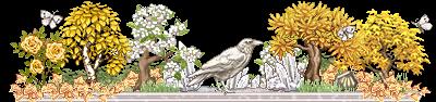 bonsai_shikoire_1_by_auricolor-dai3h65.png