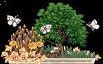 bonsai_cnicht_1_by_auricolor-dajtoqd.png
