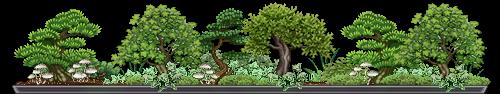bonsai_valelael_1_by_auricolor-dap3vlr.png