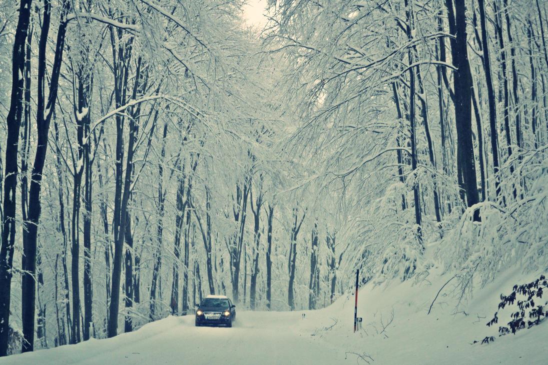 VW having fun in the snow by CynderxNero