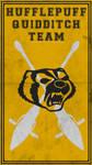 Quidditch Team Poster: Hufflepuff