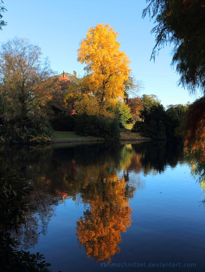 Autumn Reflection by Rahmschnitzel