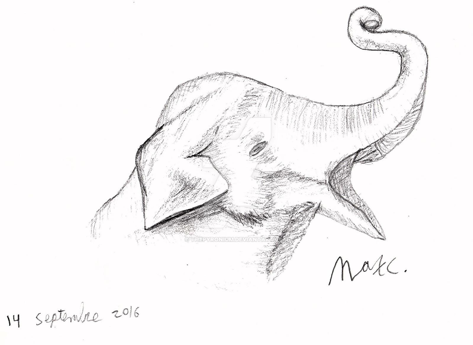 Line Drawing Elephant Head : Elephant head line drawing