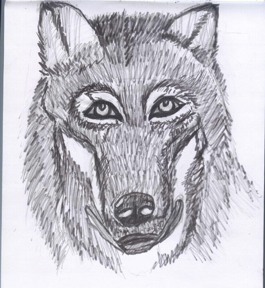 Realitism - Wolf :D by Fran48