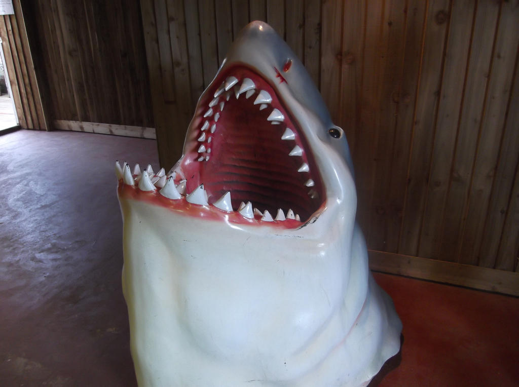 Say Ahhh XD -Shark Model by Fran48