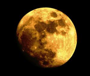 Lotiseclipse's Profile Picture