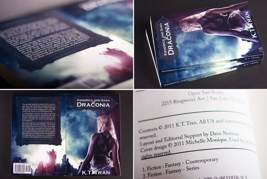 Kendrick and Sara of Draconia book cover by michellemonique