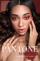 Pantone Color of the Year 2015 Marsala by michellemonique