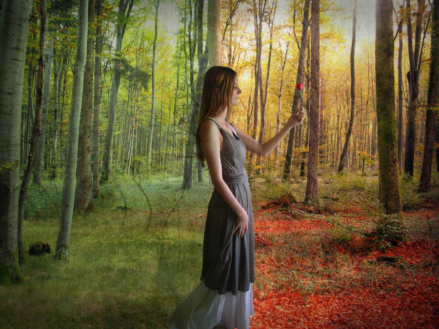 Autumnbound by Eryn-Grace-OMalley