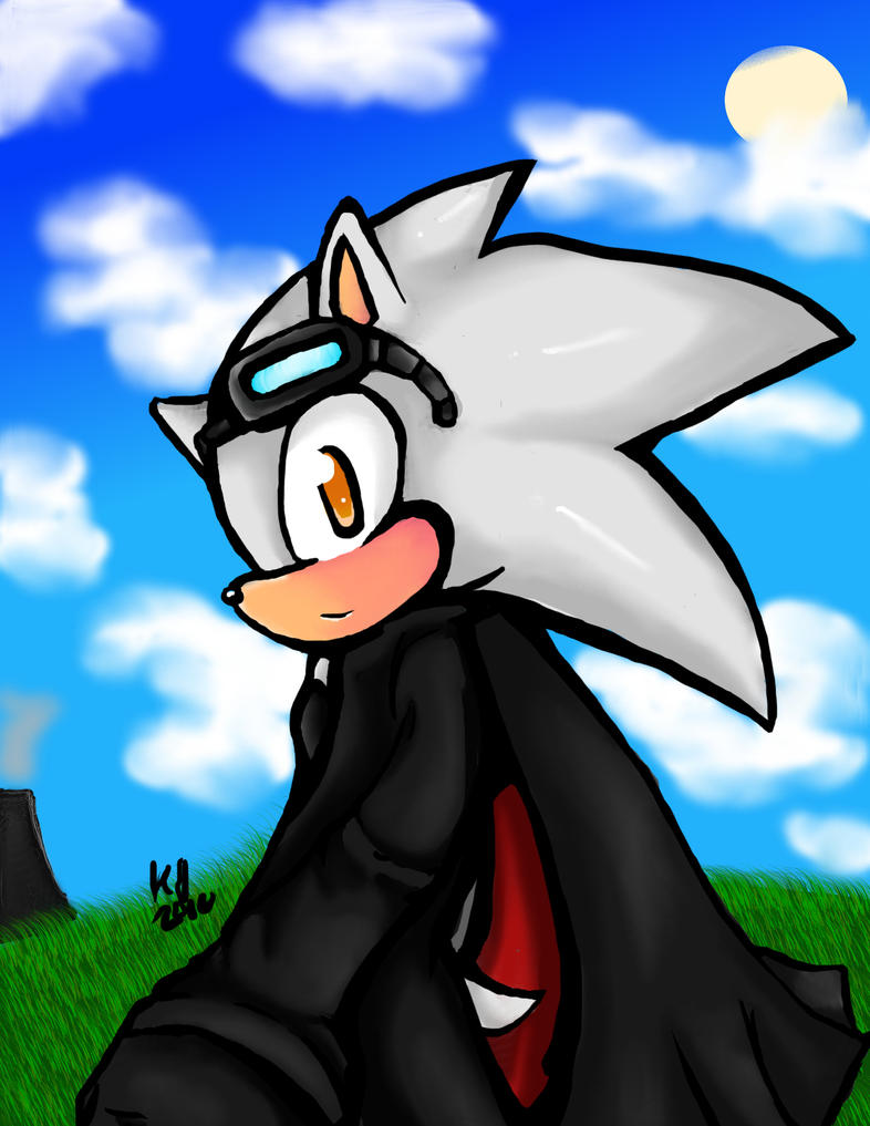 .:Gift:. Streak the Hedgehog by 3blurs