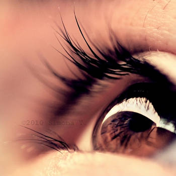 Beauty is in the eye... by 6eternity9