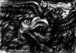 Gwaihir  the name of the bird by emeraldnephilim8