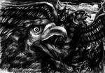 Gwaihir  the name of the bird