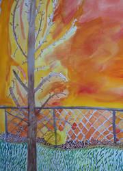 WLS: Autumn Back Yard