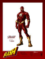 The FLASH Concept Design by Roger-Robinson