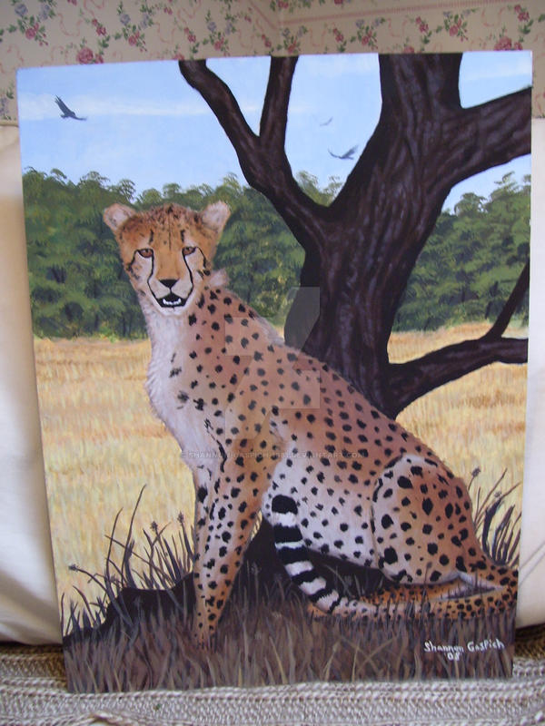 The Cheetah's Safari by Shannon-Gaspich-1981
