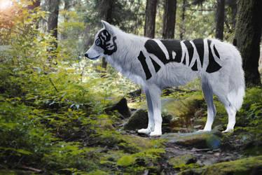 Tread along the worn paths by Snoozyhound